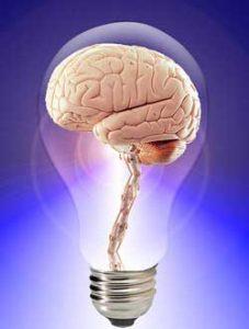 cervello dentro a lampadina